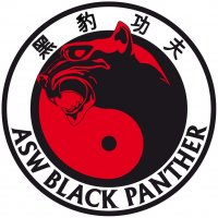 ASW BLACK PANTHER - http://www.asw-blackpanther.pl/
